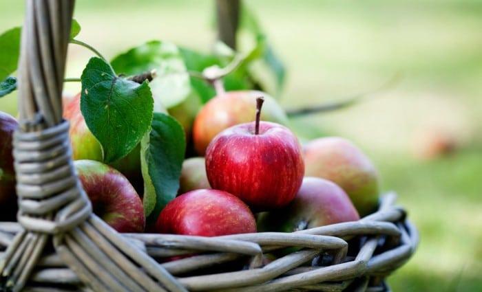Apple Frangipane Galette