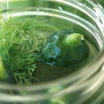 Thumbnail image for Homemade Pickles and a Memorial Day Menu