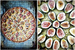 FIg Tart Collage