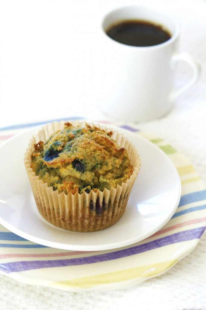 These grain free blueberry muffins are made with coconut flour. Perfect for those with nut allergies!