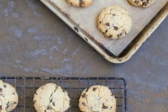 Grain Free Paleo Chocolate Chip Cookies