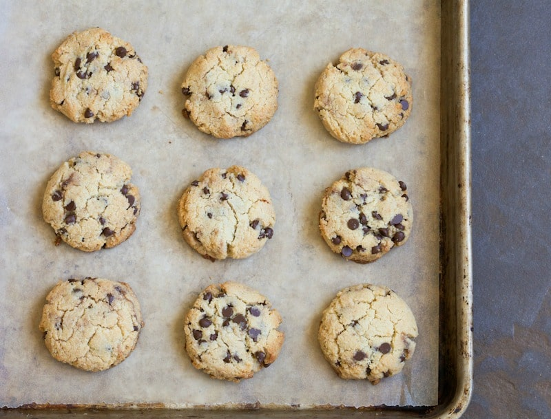 These grain free chocolate chip cookies are best the day they're baked. Make a double batch. They won't last long!