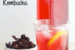 Flavored Kombucha Small