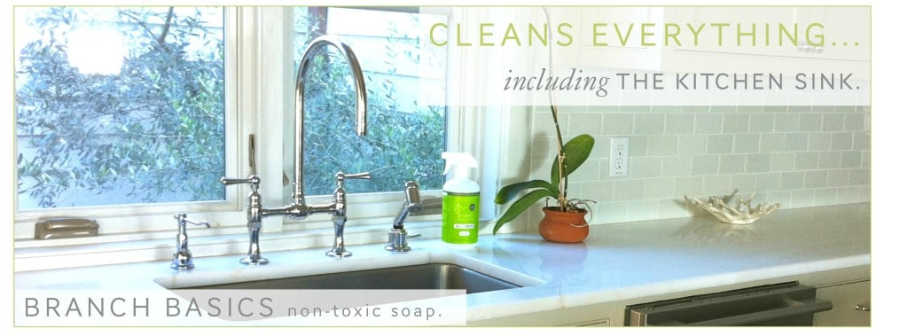 Branch Basics Green Cleaning Non Toxic All Purpose