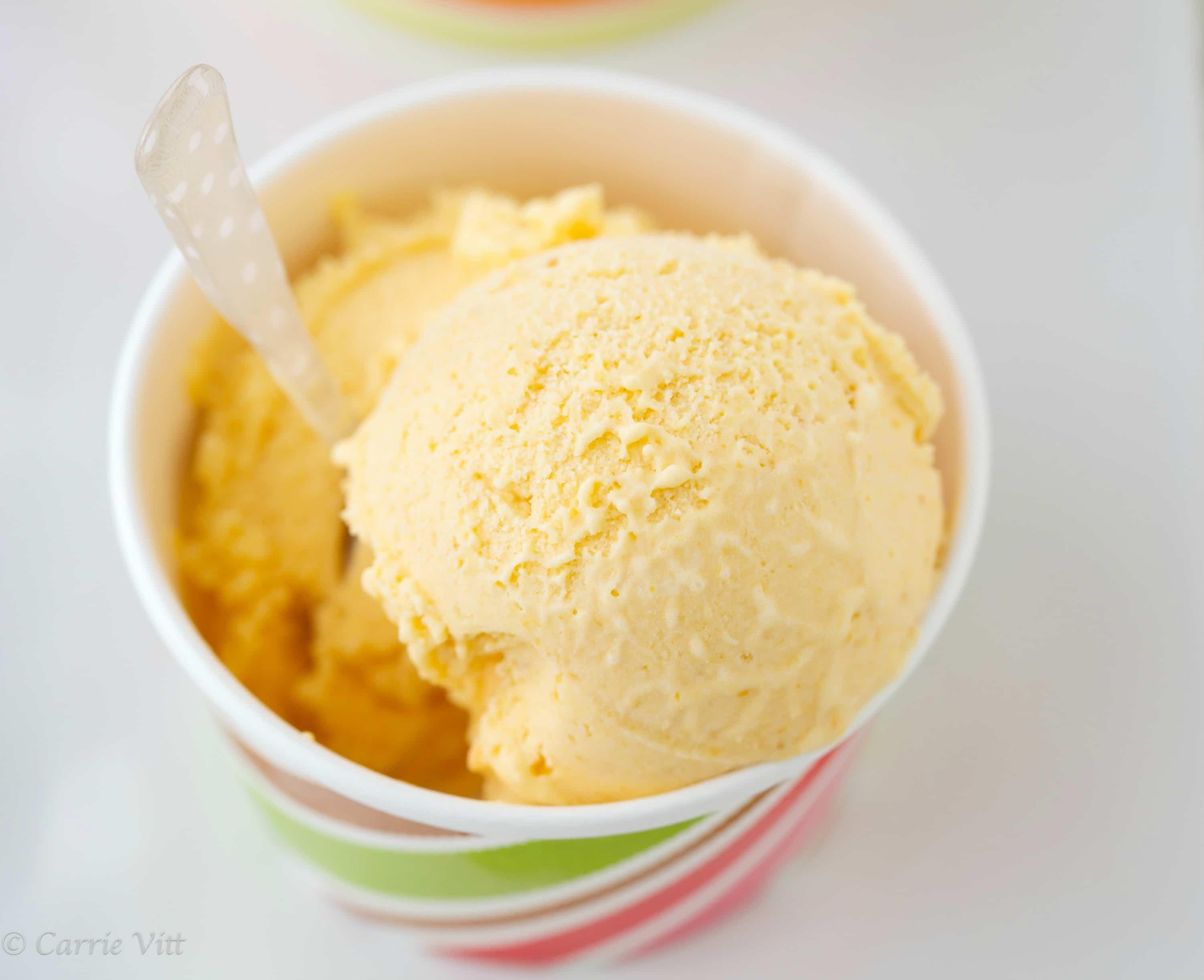 Apricot Ice Cream (Paleo, Grain-Free, Gaps)