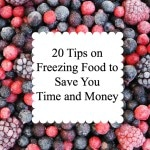Thumbnail image for 20 Tips on Freezing Food to Save You Time and Money