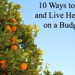 Thumbnail image for 10 Ways to Eat and Live Healthy on a Budget