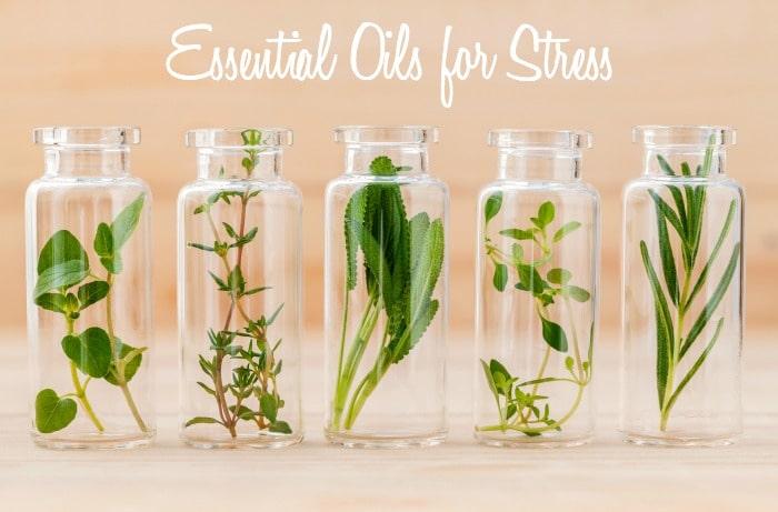 Essential oils for Stress via DeliciouslyOrganic.net