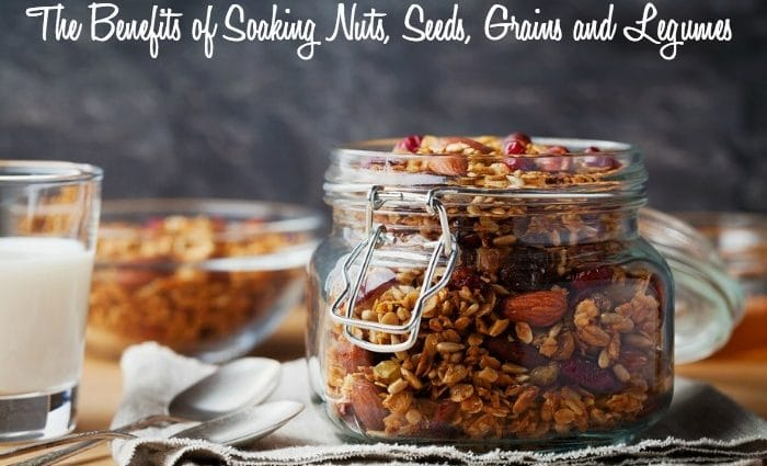 The Benefits of Soaking Nuts, Seeds, Grains and Legumes