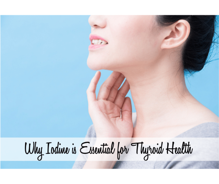 Why Iodine is Essential for Thyroid Health